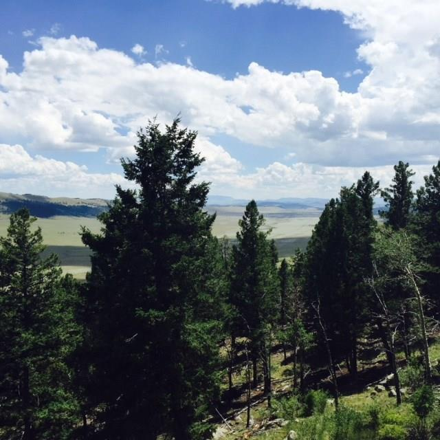 519 Middle Fork Vista, Fairplay, CO 80440 (MLS #S1008269) :: Resort Real Estate Experts