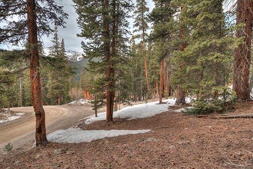 431 Doris Drive, Breckenridge, CO 80424 (MLS #S1008928) :: Colorado Real Estate Summit County, LLC