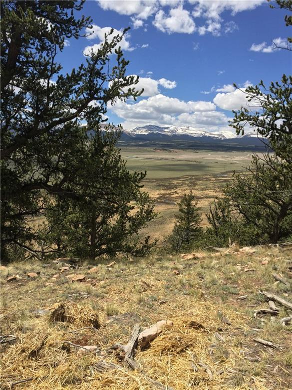 4385 Middle Fork Vista, Fairplay, CO 80440 (MLS #S1009309) :: Resort Real Estate Experts