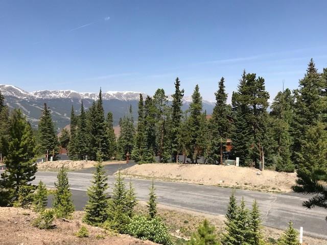 436 N Fuller Placer Road N, Breckenridge, CO 80424 (MLS #S1009592) :: Colorado Real Estate Summit County, LLC