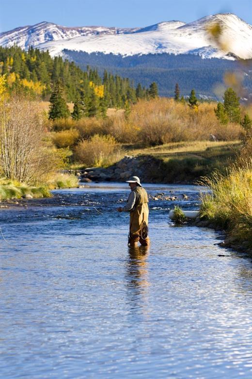 442 Footfalls, Breckenridge, CO 80424 (MLS #S1010120) :: Colorado Real Estate Summit County, LLC