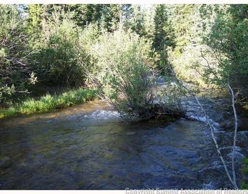 63 Mosquito Circle, Alma, CO 80420 (MLS #S1010166) :: Resort Real Estate Experts