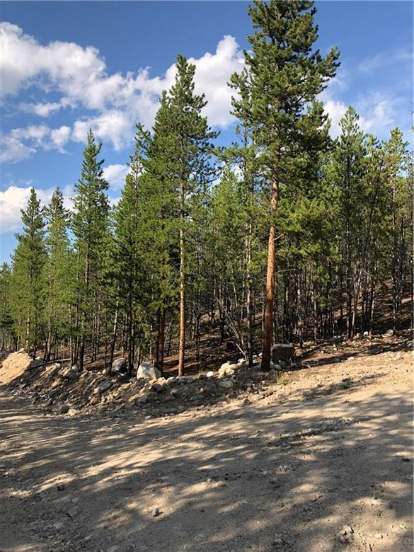 483 Mt. Massive Drive, Twin Lakes, CO 81251 (MLS #S1010490) :: Colorado Real Estate Summit County, LLC