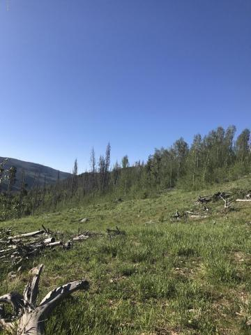 2984 Gcr 2415, Kremmling, CO 80459 (MLS #S1010596) :: Resort Real Estate Experts