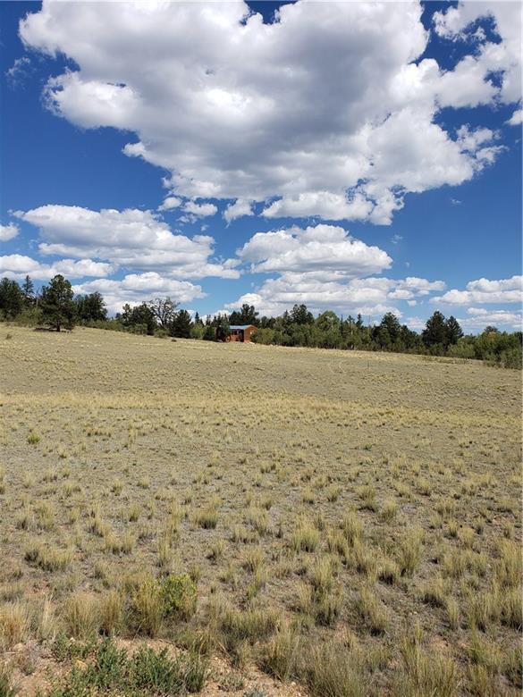 63 Whip Way, Jefferson, CO 80456 (MLS #S1010771) :: Colorado Real Estate Summit County, LLC