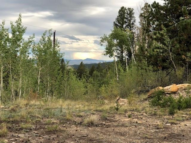 4037 Middle Fork Vista, Fairplay, CO 80440 (MLS #S1010845) :: Resort Real Estate Experts