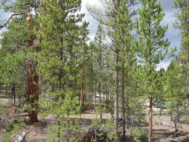 814 Peak View Drive, Twin Lakes, CO 81251 (MLS #S1011007) :: Resort Real Estate Experts