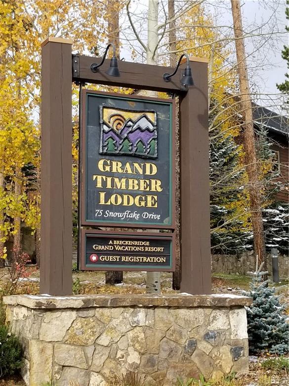 75 Snowflake Drive #0121, Breckenridge, CO 80424 (MLS #S1011236) :: Colorado Real Estate Summit County, LLC
