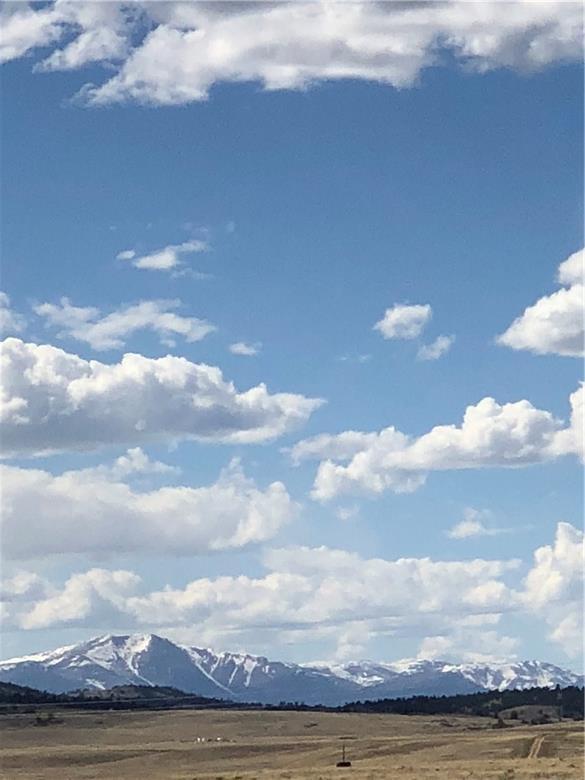 8127 Jackson Road, Hartsel, CO 80449 (MLS #S1011728) :: Colorado Real Estate Summit County, LLC