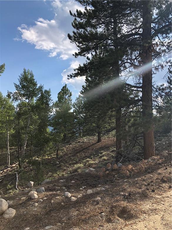 142 La Plata Peak, Leadville, CO 80461 (MLS #S1011747) :: Colorado Real Estate Summit County, LLC