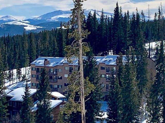 9876 Ryan Gulch Road #103, Wildernest, CO 80498 (MLS #S1011762) :: Colorado Real Estate Summit County, LLC