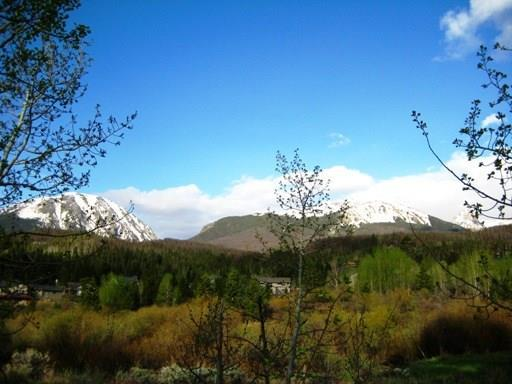 1683 Falcon Circle, Silverthorne, CO 80498 (MLS #S1012421) :: Colorado Real Estate Summit County, LLC