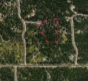 56 Peaceful Court, Fairplay, CO 80440 (MLS #S1012537) :: Resort Real Estate Experts