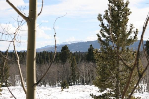TBD Wheat Way Way, Fairplay, CO 80440 (MLS #S1013312) :: Colorado Real Estate Summit County, LLC