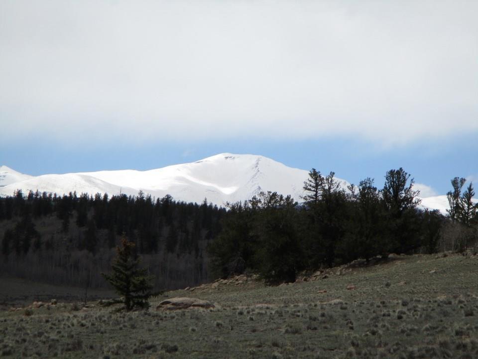 88 Mound Road - Photo 1