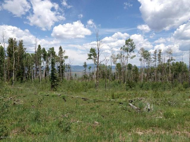 TBD County Road 373, Parshall, CO 80468 (MLS #S1013620) :: Colorado Real Estate Summit County, LLC