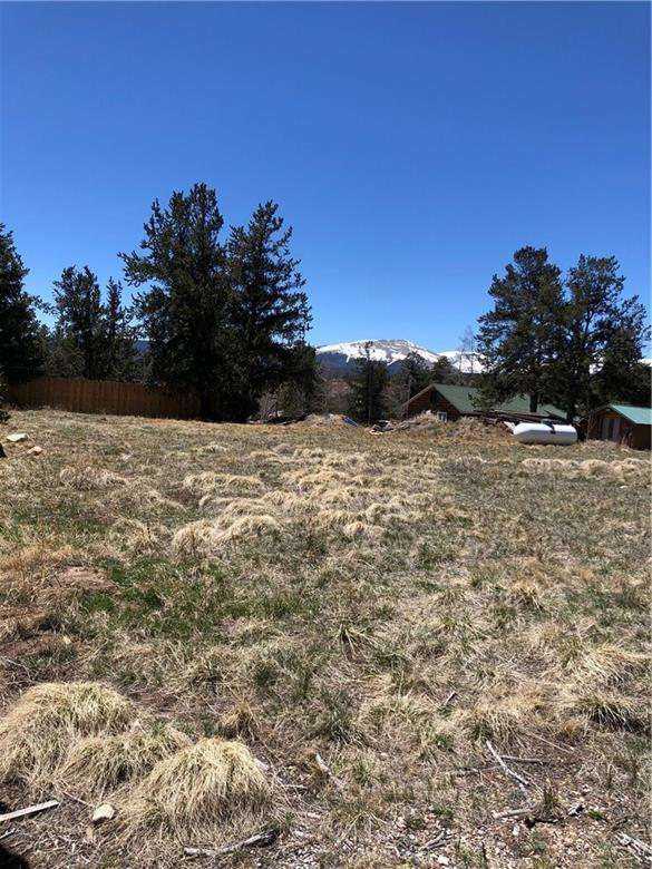 tbd Witcher Street, Fairplay, CO 80440 (MLS #S1013921) :: Colorado Real Estate Summit County, LLC