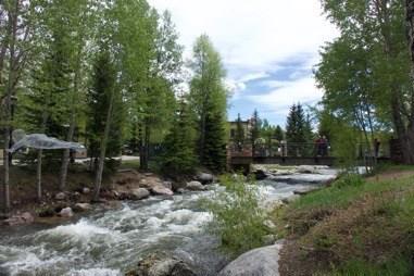 110 S Park Avenue S #117, Breckenridge, CO 80424 (MLS #S1014087) :: Colorado Real Estate Summit County, LLC