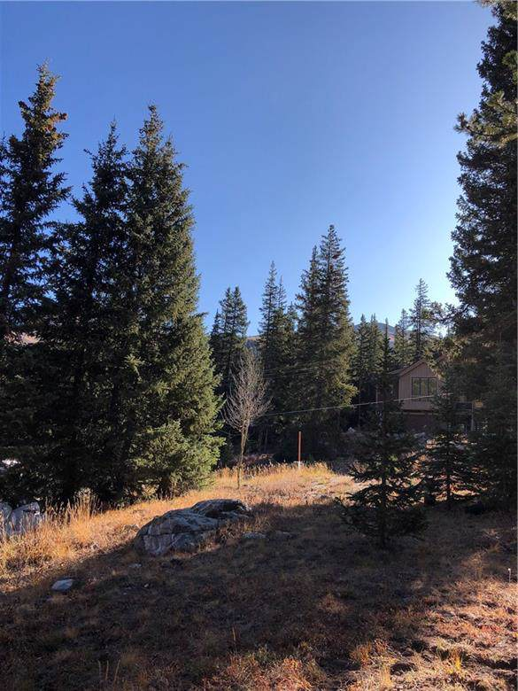 623 Cr672, Breckenridge, CO 80424 (MLS #S1015640) :: Dwell Summit Real Estate