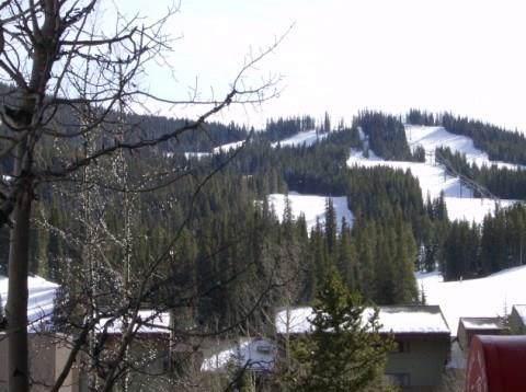 189 Ten Mile Circle 531/533, Frisco, CO 80443 (MLS #S1015910) :: Dwell Summit Real Estate