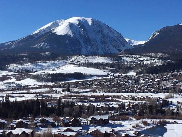 55 Pheasant Tail Lane, Silverthorne, CO 80498 (MLS #S1015965) :: eXp Realty LLC - Resort eXperts