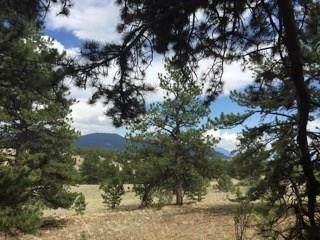 147 Crater Lake Way, Hartsel, CO 80449 (MLS #S1017885) :: Colorado Real Estate Summit County, LLC
