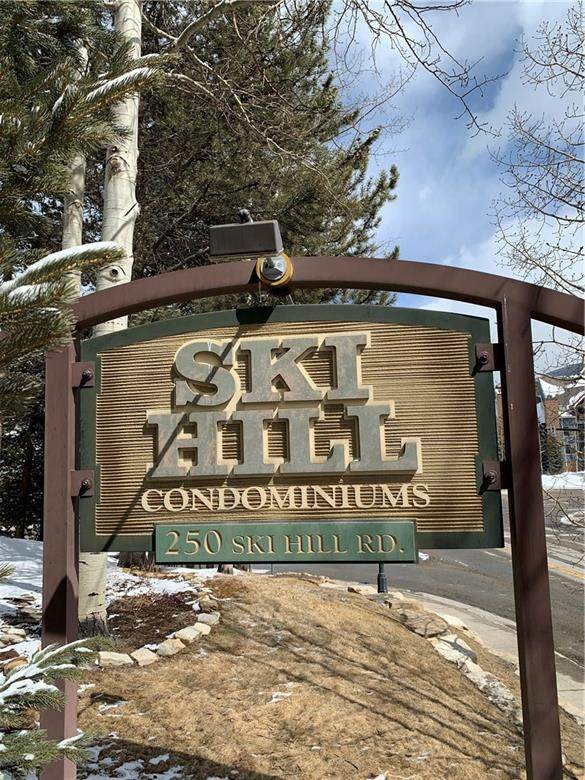 250 Ski Hill Road #36, Breckenridge, CO 80424 (MLS #S1017966) :: Dwell Summit Real Estate