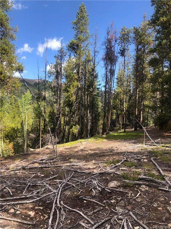 3222 Bryant & Daley, Leadville, CO 80461 (MLS #S1018770) :: Colorado Real Estate Summit County, LLC