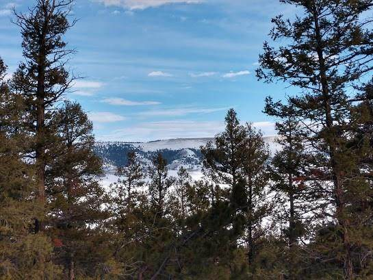 0 Middle Fork Vista, Fairplay, CO 80440 (MLS #S1020833) :: Dwell Summit Real Estate