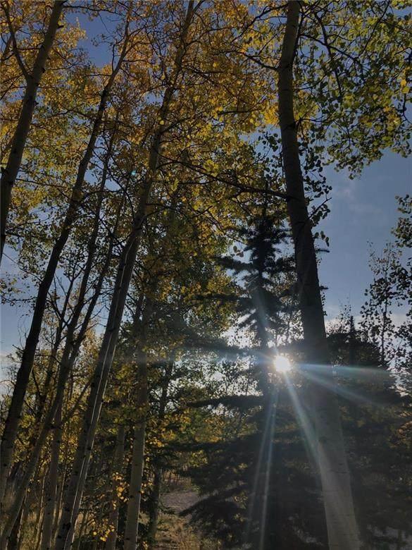 273 Fremont Knoll Lane, Jefferson, CO 80456 (MLS #S1022629) :: Dwell Summit Real Estate