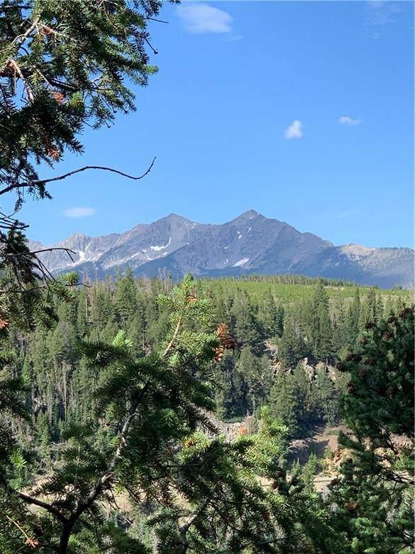 487 Summerwood Drive, Dillon, CO 80435 (MLS #S1022816) :: Colorado Real Estate Summit County, LLC