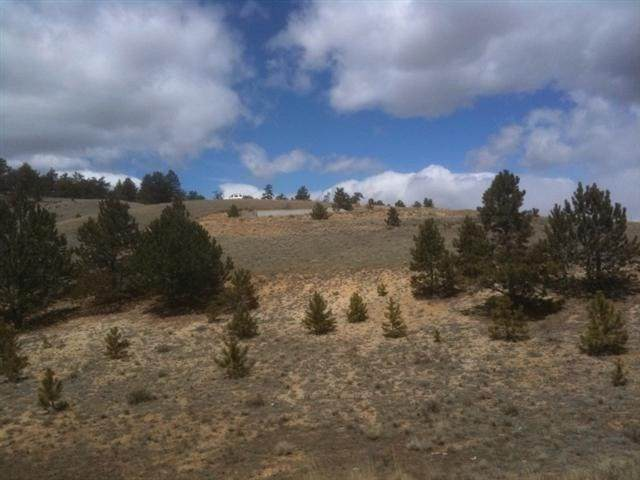 394 Lancelot Lane, Hartsel, CO 80449 (MLS #S1024078) :: Colorado Real Estate Summit County, LLC