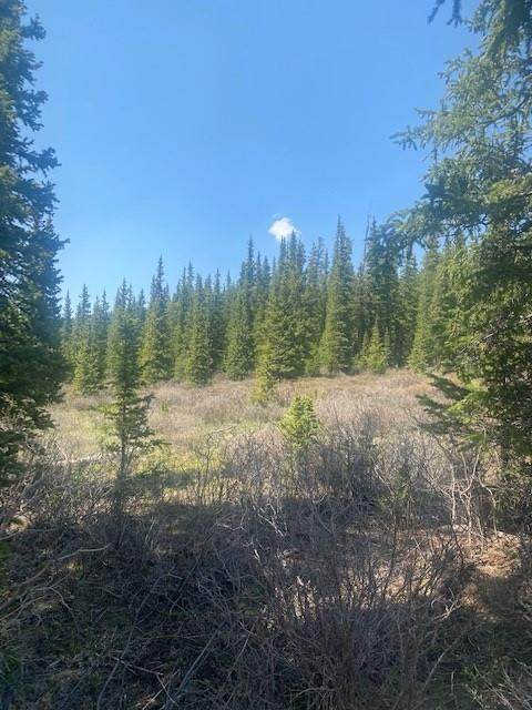 0 Tbd, Fairplay, CO 80440 (MLS #S1027519) :: eXp Realty LLC - Resort eXperts