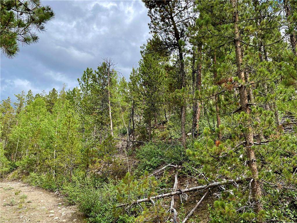 10 Mt Elbert Drive - Photo 1