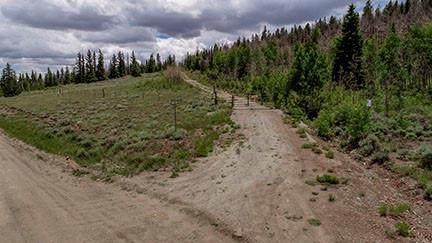 0 Co Road 22, Fairplay, CO 80440 (MLS #S1029103) :: Colorado Real Estate Summit County, LLC