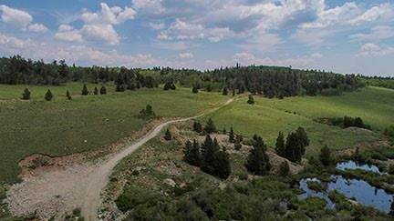 1540 Beaver Creek Road, Fairplay, CO 80440 (MLS #S1029371) :: Colorado Real Estate Summit County, LLC