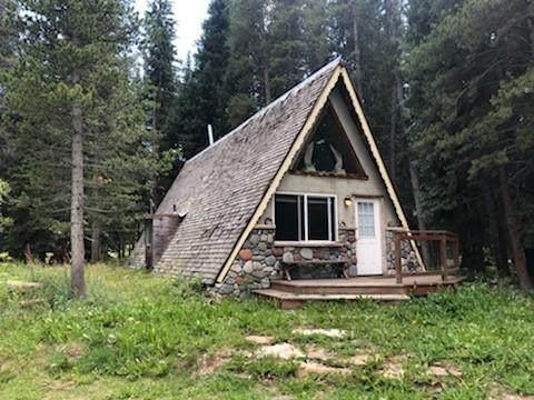 48 Grey Squirrel Lane, Blue River, CO 80424 (MLS #S1030709) :: Colorado Real Estate Summit County, LLC