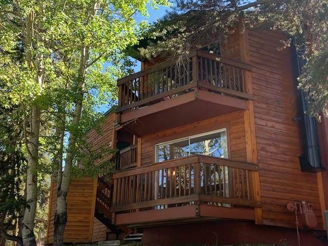 1080 Ski Hill Road #6, Breckenridge, CO 80424 (MLS #S1031125) :: Clare Day with Keller Williams Advantage Realty LLC