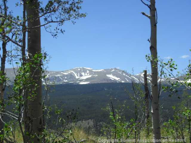 0 Polaris Road, Alma, CO 80420 (MLS #S379123) :: Colorado Real Estate Summit County, LLC