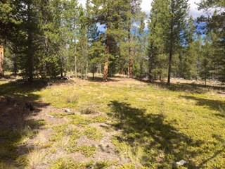495 Spruce Drive, Twin Lakes, CO 81251 (MLS #S1006788) :: Resort Real Estate Experts