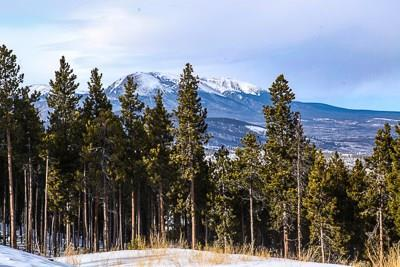 1228 Discovery Hill Drive, Breckenridge, CO 80424 (MLS #S1007495) :: Resort Real Estate Experts