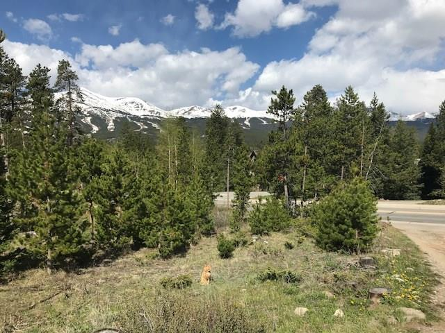 300 Wellington, Breckenridge, CO 80424 (MLS #S1009196) :: Colorado Real Estate Summit County, LLC
