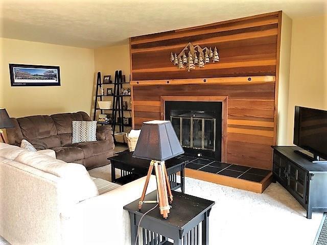 91100 Ryan Gulch Road #91112, Silverthorne, CO 80498 (MLS #S1010827) :: Colorado Real Estate Summit County, LLC