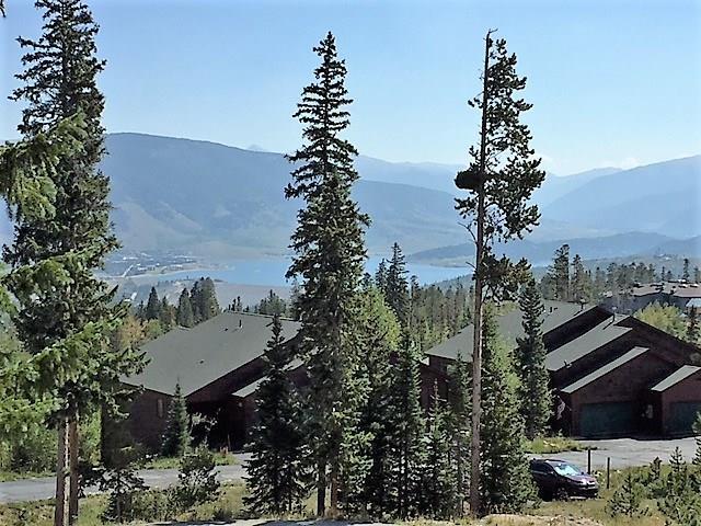 89410 Ryan Gulch Road 204E, Silverthorne, CO 80498 (MLS #S1012867) :: Colorado Real Estate Summit County, LLC