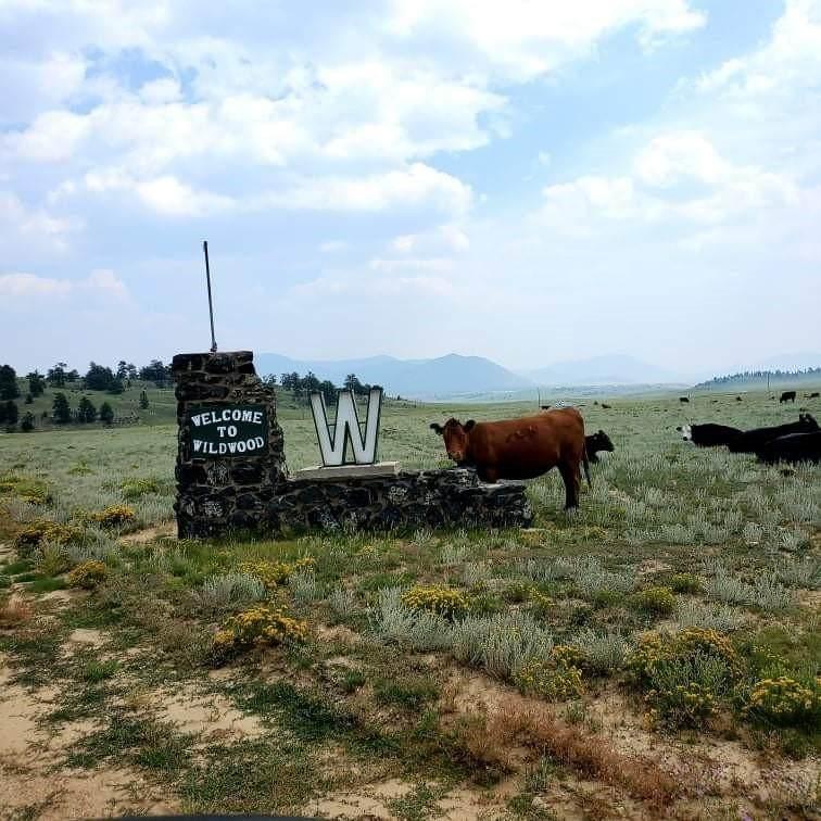 1529 Yellowstone Road - Photo 1