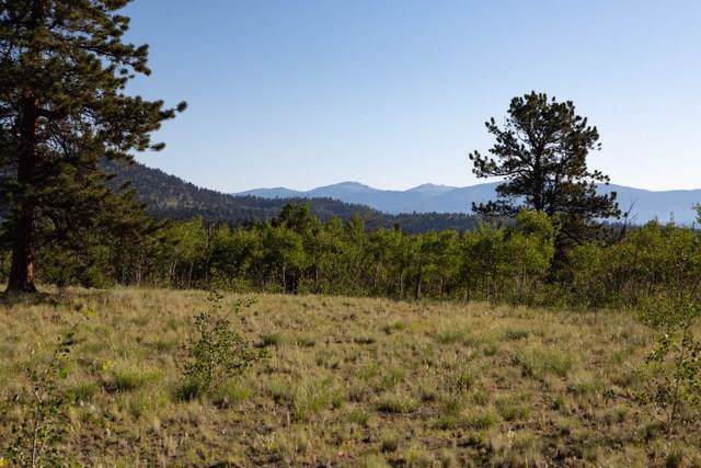113 Chase Lane, Como, CO 80432 (MLS #S1014030) :: eXp Realty LLC - Resort eXperts