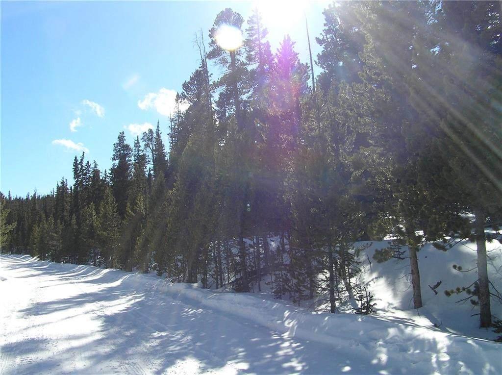 459 Porcupine Road - Photo 1