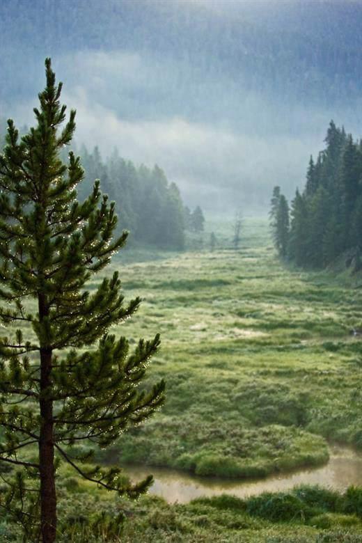 150 Bergen Trail - Photo 1