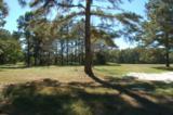 417 Pine Lake Ct. - Photo 1