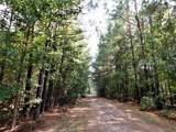 TBD Skinner Road - Photo 4